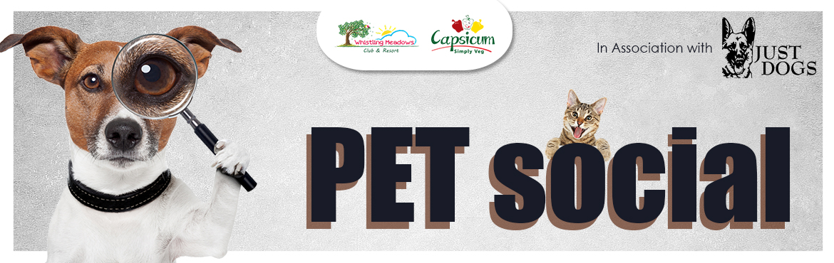Book Online Tickets for Pet Social , Ahmedabad. Get ready to witness Some amazing Pet Actions.  Fun, Frolic and Pet Social.  The Pet Social brings together pets for a great day only at Whistling Meadows. Let your pets know that they are special in every way!
