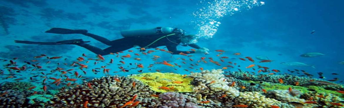 "Book Online Tickets for Scuba Diving In Grande Island Goa, Goa. Scuba Diving In Grande Island Goa Trip Inclusions Best Meals, Transport and Accommodation Services. Now Everything Becomes Comfortable With Sea Water Sports. No –Early, No- Late!!! ""ON TIME"" ✔ Pick & Drop from the Scuba D"