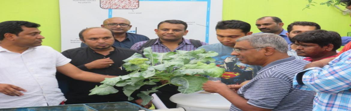 Book Online Tickets for Aquaponics and Hydroponics workshop, Bengaluru. Hydrilla will be hosting a one-day workshop on Hydroponics & Aquaponics farming methods! This will be the first in a number of training opportunities with practical hands-on of Aquaponics & Hydroponics systems.The workshop delves deeper