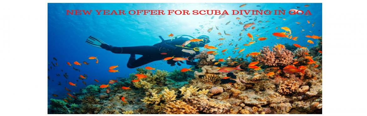Book Online Tickets for New Year Offer For Scuba Diving In Goa, Goa. New Year OfferFor Scuba Diving In Goa Please Read Carefully The Event Description. Best Meals, Transport and Accommodation Services. ✔Pick / Drop from the Dive Centre ✔Training in the swimming pool/shallow water &nbs