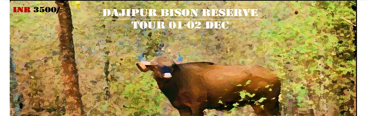 Book Online Tickets for DAJIPUR BISON RESERVE TOUR 01-02 DEC 201, Olavan. PLEASE CALL TO KNOW ABOUT SEAT AVAILABILITY BEFORE PROCEEDING WITH PAYMENT!!  Event Date: 01 – 02 Dec  Event Location: Dajipur Sanctuary  Event Category: Tour & Safari  Travel Distance: 320 KMs (One way – Ex Pu