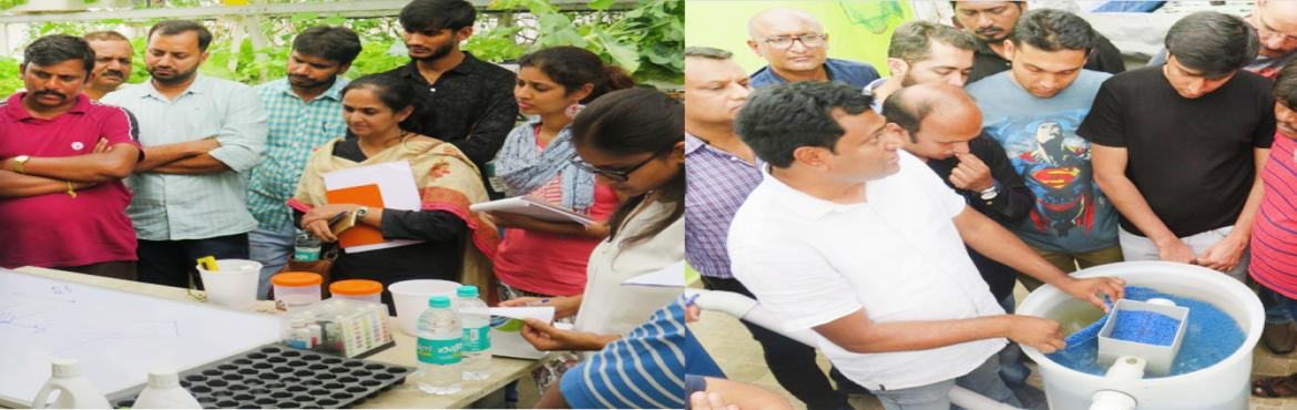 Book Online Tickets for Aquaponics and Hydroponics workshop, Bengaluru. Hydrilla has a full day workshop on Aquaponics & Hydroponics.The workshop delves deeper into the mechanics of Aquaponics & Hydroponics systems, plant and fish nutrition requirements, water and nutrient parameters, parameters to achieve commer