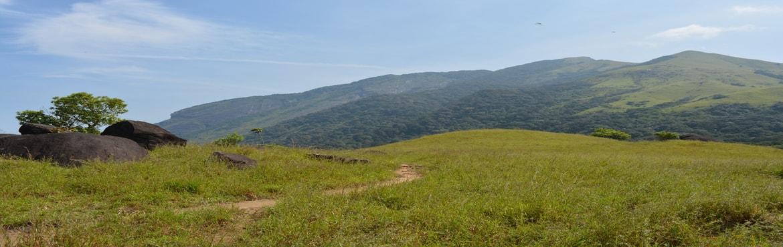 Book Online Tickets for kumaraparavatha trek, Bengaluru. Kumaraparvatha::Pushpagiri or Kumara Parvatha, at 1,712 metres, is the highest peak in Pushpagiri Wildlife Sanctuary in the Western Ghats of Karnataka. Kumara parvatha is second highest peak in Coorg district (Karnataka state) after Tadia