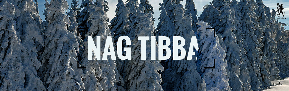 "Book Online Tickets for Nag Tibba, Mussoorie. Himalayas, weekend Away!! Nag tibba! Nag refers to the ""god of snakes"" i.e ""naag devta"" from Hindu mythology and tibba is a local word for hills. It is at an altitude of approx. 3025 meters. The mountain range lies in Garwhal"