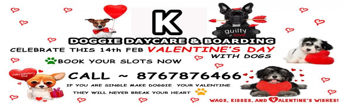 Book Online Tickets for Celebrate Valentine Day With Dogs - K Do, Mumbai. Valentine\'s Day celebration with dogs @K DOGGIE DAYCARE   #IF YOU ARE DOG LOVE MAKE DOGS YOUR VALENTINE...THEY WILL NEVER BREAK YOUR HEART   Book your slots now   K DOGGIE DAYCARE BORIVALI WEST MUMBAI