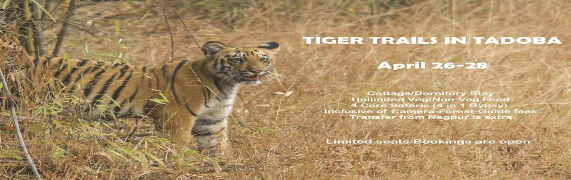 Book Online Tickets for Tiger Trail in Tadoba, Chandrapur. WILDLIFE PHOTOGRAPHY WORKSHOPTadoba Andhari Tiger Reserve is in Chandrapur district of Maharashtra State in Central India and one of the oldest and largest National Park.The name \