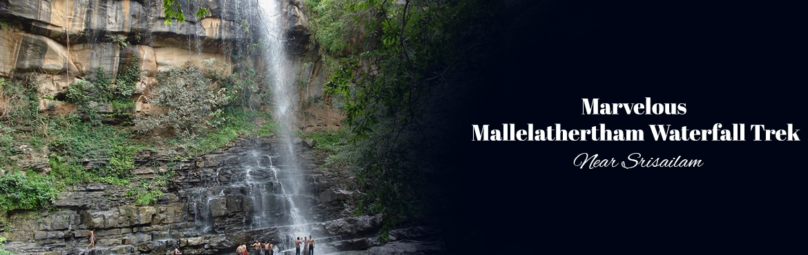 Book Online Tickets for Marvelous Mallelathertham Waterfall Trek, Nagarkurno. Mallela Theertham is a beautiful waterfall located in the dense Nallamala Forest. Water in this place comes from a small stream and joins River Krishna. This place is around 160 Km from Hyderabad and located 8 Km into the forest from Highway.Mellala
