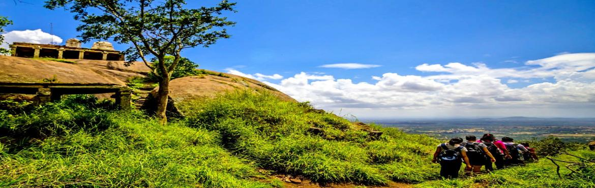 Book Online Tickets for One-Day Trek to Uttari Betta, Bengaluru.    About Uttari Betta :One of Karnataka\'s greatest day hike, the Uttari Betta is a 5 kms trek across a spectacular lush green landscape which offers a quite unique scenic views similar to western ghats. The trek starts from a small village