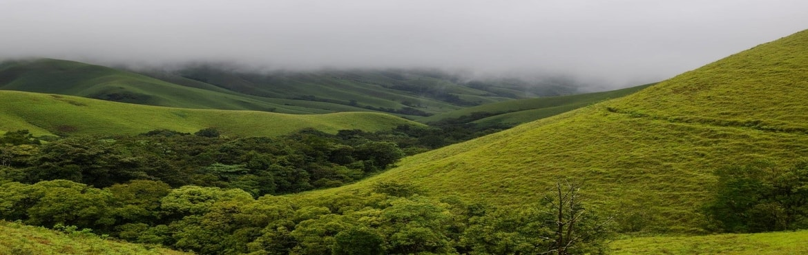 Book Online Tickets for Kudremukh trek, Bengaluru. Kudremukhin South Karnataka which stands tall at a height of 1894 meters. The name Kuduremukha literally means \'horse-face\' (Kannada) and refers to a particular picturesque view of a side of the mountain that resembles a horse\'s face. Known