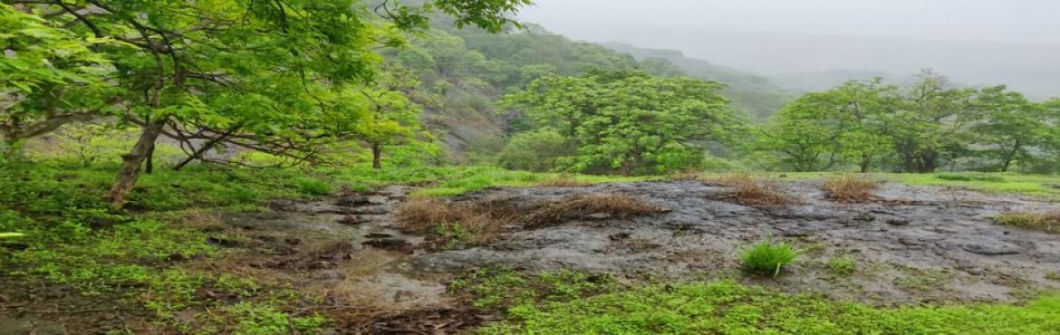 Book Online Tickets for Beginners Trail at Sanjay Gandhi Nationa, Mumbai. Beginner\'s Trail at Sanjay Gandhi National Park   A short and beautiful Trail which suits all ages. It is one of the best trail to initiate your child into the charms of the forest. The walk ison flat terrain and ends at a flowing stream