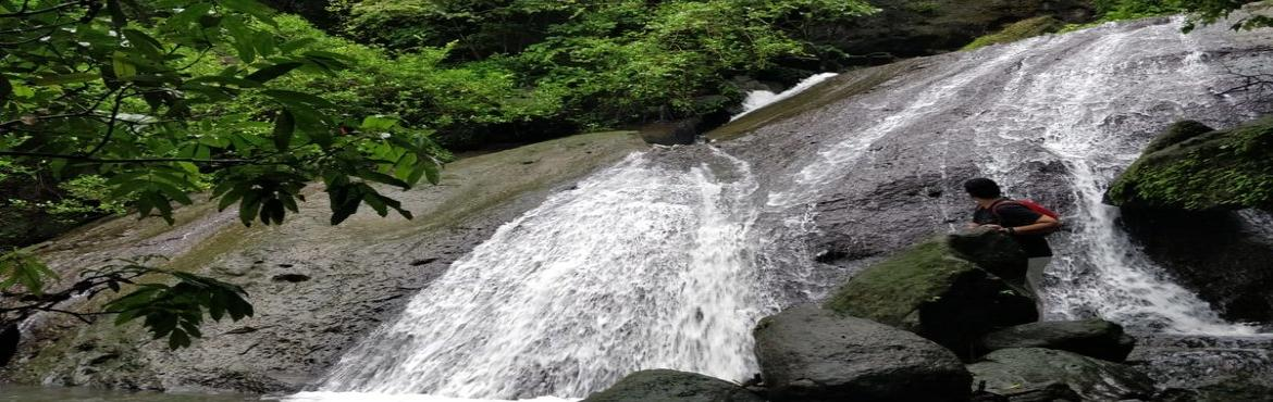 Book Online Tickets for Beginners Trail at Sanjay Gandhi Nationa, Mumbai.  A short and beautiful Trail which suits all ages. It is one of the best trail to initiate your child into the charms of the forest. The walk is on flat terrain and ends at a flowing stream. On this trail the naturalist will talk about th