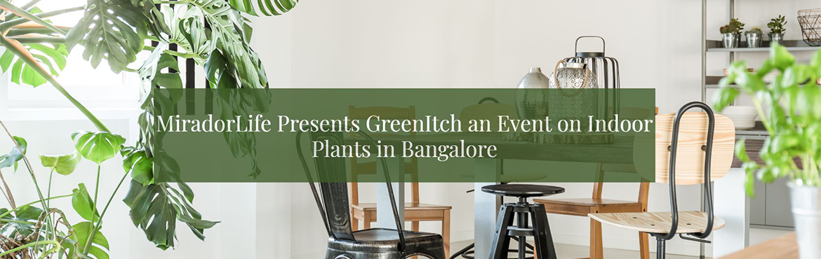 Book Online Tickets for Green Itch - An Event on Indoor Plants, Bengaluru. MiradorLife Presents Green Itch – an Event on Indoor Plants in Bangalore  Are you aware of the impact of indoor plants in your home? Or are you struggling to choose the right houseplant? Then, the Green Itch event by MiradorLife may be th