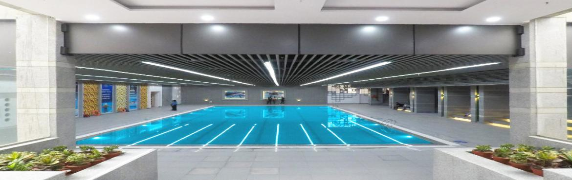 Book Online Tickets for Fitso SEALs Swimming Classes Sapphire, Noida.  After a successful stint and training a whopping 50,000+ people from all across our 25+ swimming academies in Delhi-NCR. A Fitso SEALs experience is a deliberate amalgamation of High-performance Swimming Infrastructure & Comprehensive guid