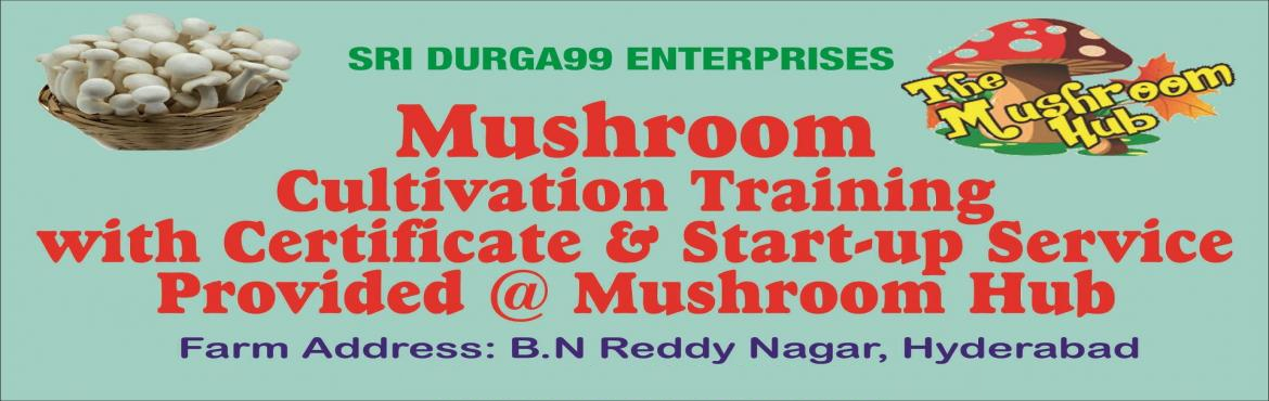 Book Online Tickets for ORGANIC MUSHROOM CULTIVATION TRAINING-SR, Hyderabad. ORGANIC MUSHROOM CULTIVATION TRAINING-SRI DURGA MUSHROOM HUB, HYDERABAD.   ORGANIC MUSHROOM CULTIVATION TRAINING-SRI DURGA MUSHROOM HUB, HYDERABAD. WE ARE FROM MUSHROOM HUB A WOMEN START UP TO PROVIDE HYGIENIC FOOD PRODUCTS TO THE NATION.