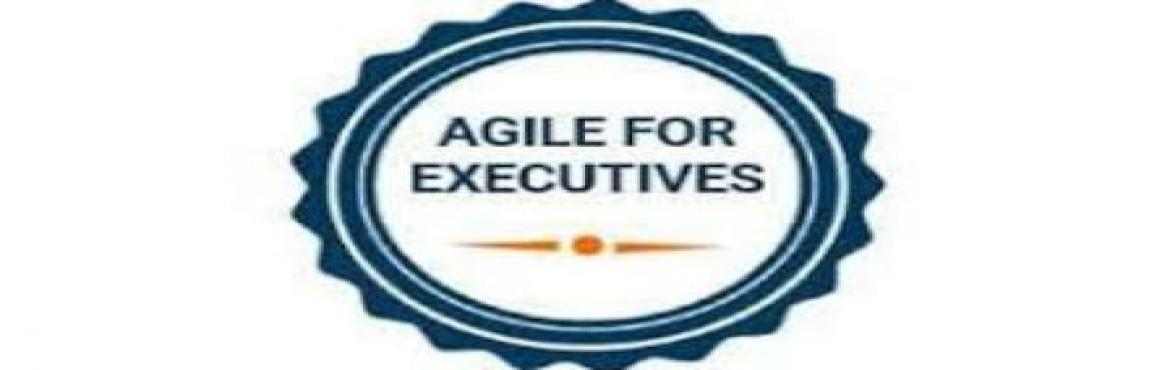 Book Online Tickets for Agile For Executives Training in Hyderab, Hyderabad. Course Description:This one-day course presents a step-by-step approach to Agile for Executives. The course provides you with overviews of key principles and benefits of applying Agile methodologies. Defining the Challenges of Software Developm