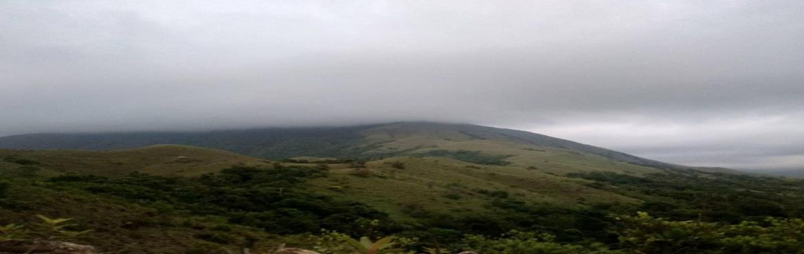 Book Online Tickets for Kumaraparvatha trek , Bengaluru.  Brace yourself to find the breathtaking panoramic view of the Kumaraparvatha. The 1712 meter altitude where the hills are situated at has a dense forest around. Every year the peak is explored by thousands of people.      INCLUDED::   Transpor