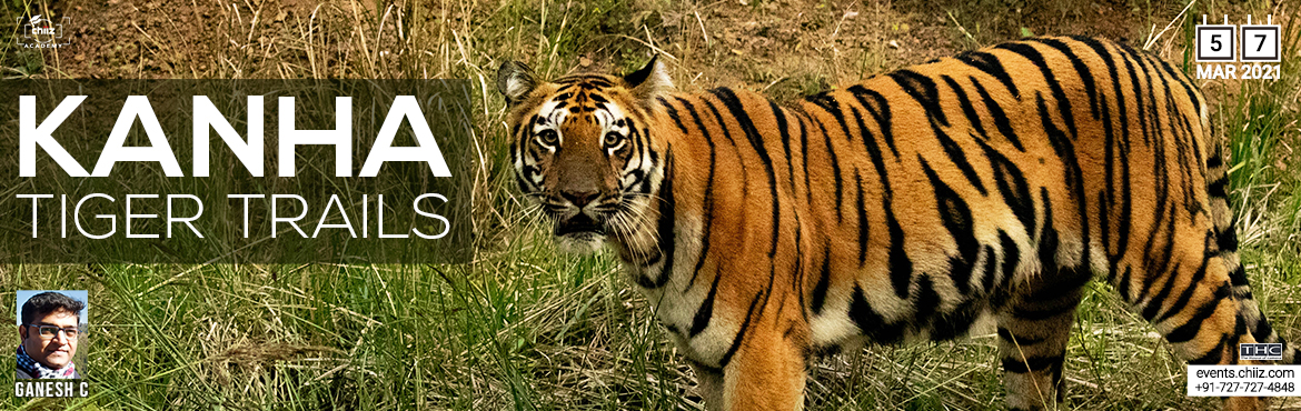 Book Online Tickets for Kanha Wildlife Photo Tour, Madhya Pra. Kanha National Park vividly portrayed in Kipling\'s Jungle book, Its Sal forests, grasslands and the streams are the haunt of the majestic tiger. Fauna includes leopard, gaur, barking deer, black buck, the rare hardground barasingha and over two hund