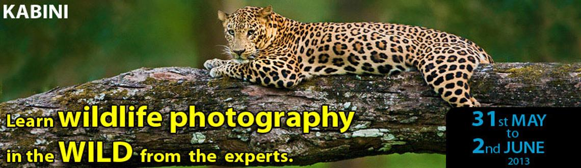 Book Online Tickets for Kabini Photo Tour, Bengaluru.                                          &nbs