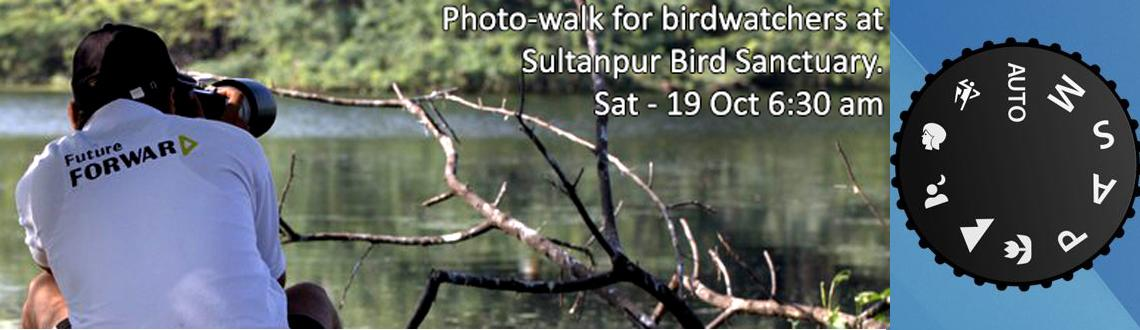 Photo-walk for birdwatchers at Sultanpur Bird Sanctuary