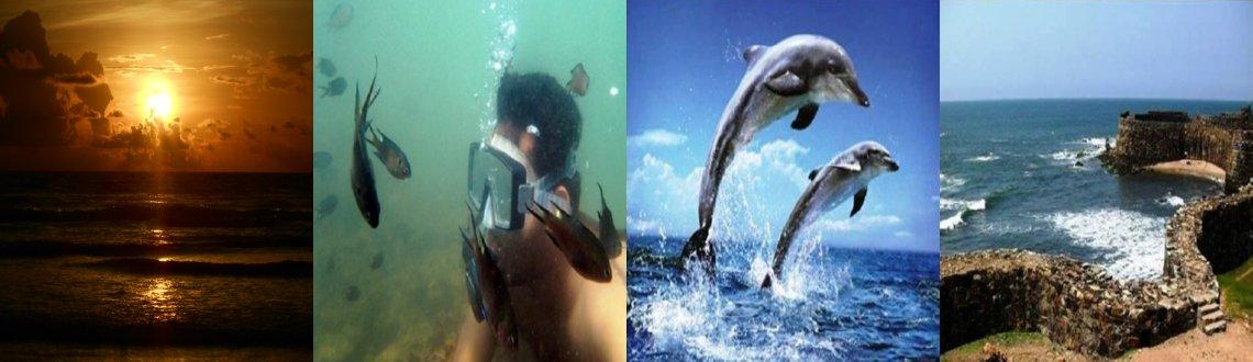 SCUBA Diving, Beach Camping, Dolphin watching Trip to Tarkarli, Konkan