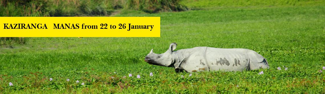 KAZIRANGA - MANAS from 22 to 26 January