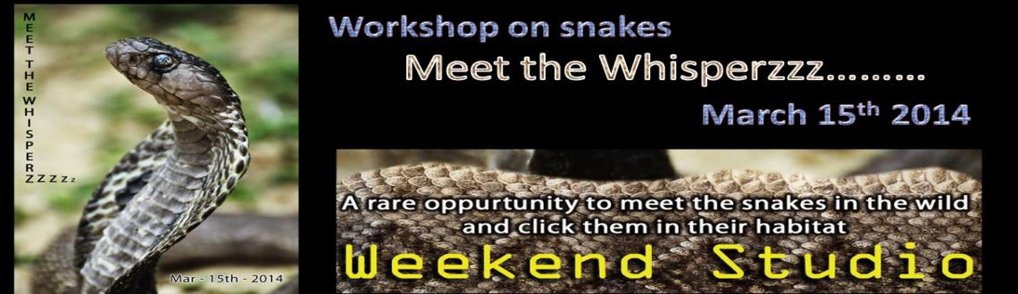 Book Online Tickets for Meet the Whisperzzz, Chennai. Snakes are often killed because of perception that its dangerous and venomous species. But not all species are poisonous and they actually help to balance the eco system. To create awareness on  snakes and protect the species which is on decline