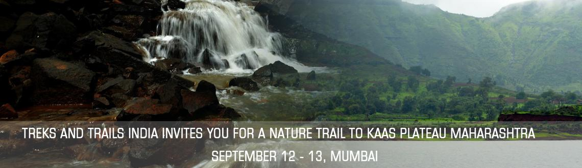 Book Online Tickets for Treks and Trails India invites you for a, Mumbai. Treks and Trails India invites you for a Nature Trail to Kaas PlateauMaharashtra Valley of Flowers on September 13th 2014 Saturday.About:Kaas Plateau is known as Maharashtra\\\'s Valley of Flowers. Kaas Plateau is situated on the high hills of Sahyad