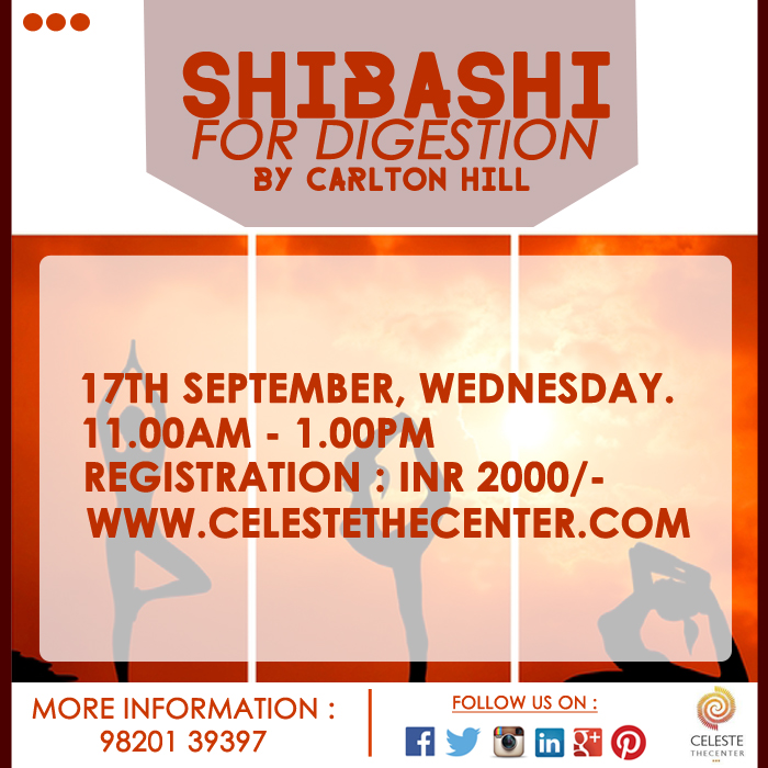 Workshop : Shibashi For Digestion By Carlton Hill