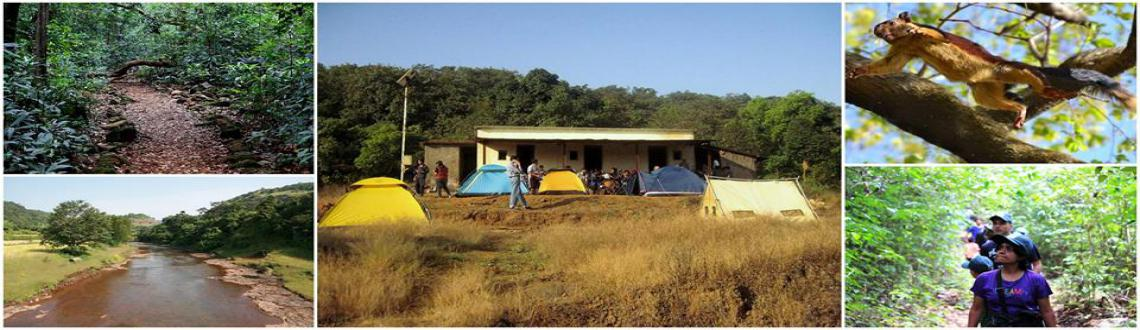 Camping Inside Bhimashankar Wildlife Sanctuary