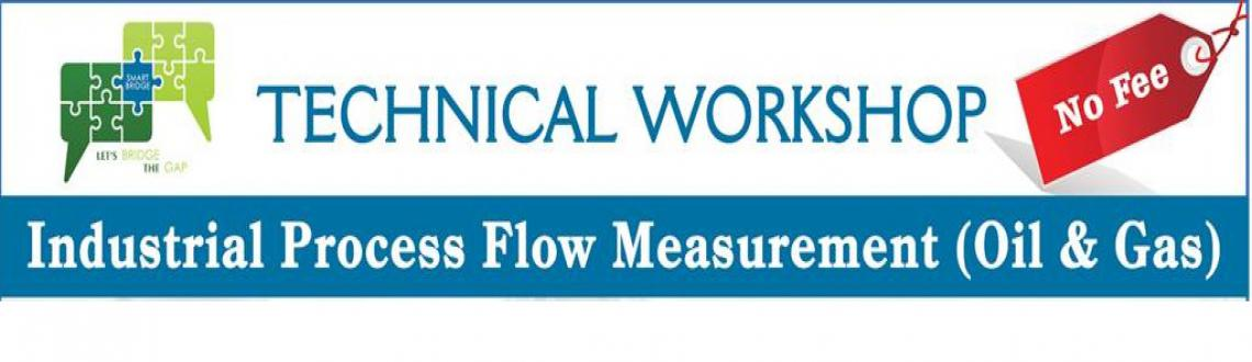Workshop on Industrial Process Flow Measurement