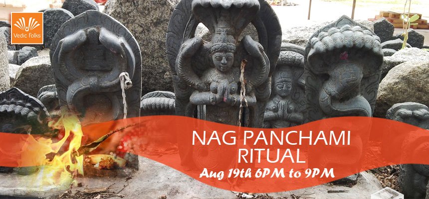 Book Online Tickets for Live Nag Panchami Puja, Chennai.  Nag Panchami Puja – Nag devta Homam Live Webcast on August 19th, Wednesday at 6PM - 9PM IST  Naga Panchami is one such festival people worship and follow traditional rituals to Nagaraja in the form of snake. This year it is commencin