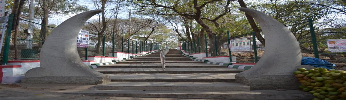 Basavanagudi Darshan.