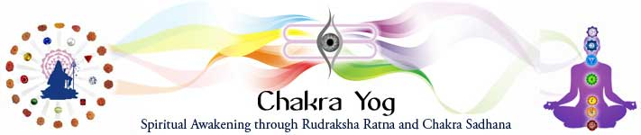 Book Online Tickets for Chakra Yogi - Level 1, . Chakra Yog Workshop