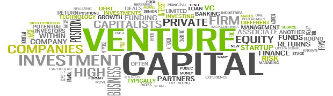 Venture Capital (VC) 101 for Startups  Entrepreneurs