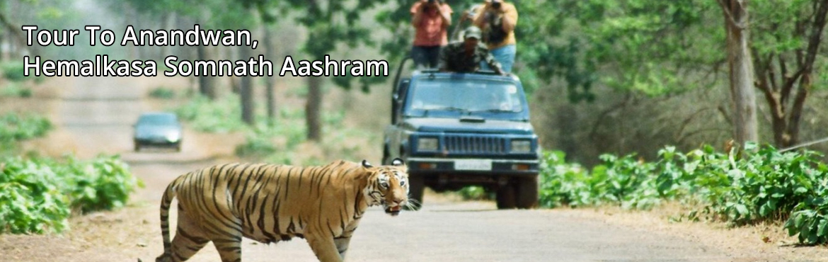 Tour To Anandwan, Hemalkasa  Somnath Aashram On 17th March - 21st March
