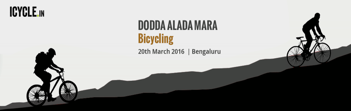 DODDA ALADA MARA Bicycling Event