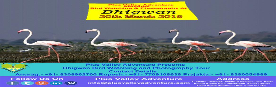 Bhigwan Bird Watching and Photography Tour 2016