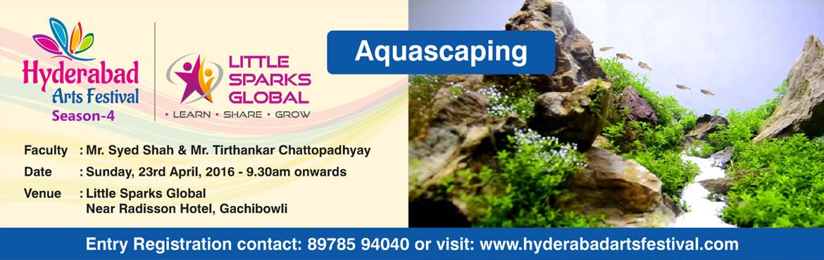 HAF - Aquascaping