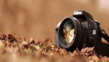 Thru-da-Lens Final