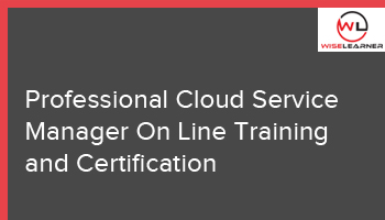 Professional Cloud Service Manager On Line Training and Certification