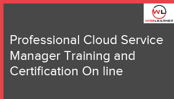 Professional Cloud Service Manager Training and Certification On line