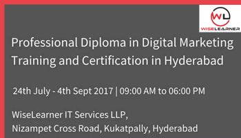 Professional Diploma in Digital Marketing Training and certification programme