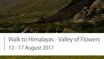 Walk to Himalayas - Valley of Flowers