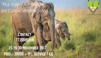 Jim Corbet Wildlife Tour