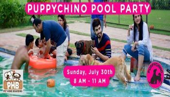 Puppychino Pool Pawty