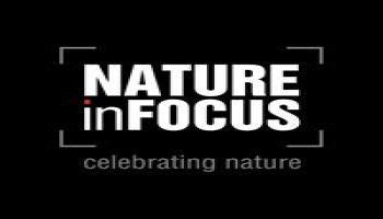 Nature inFocus Photography Festival 2017