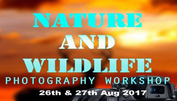 Nature and Wildlife Photography workshop