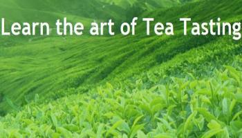 Learn the art of Tea Tasting