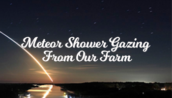 Meteor Shower Gazing From Our Farm