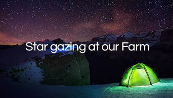 Camping, Barbecue and Stargazing at our Farm